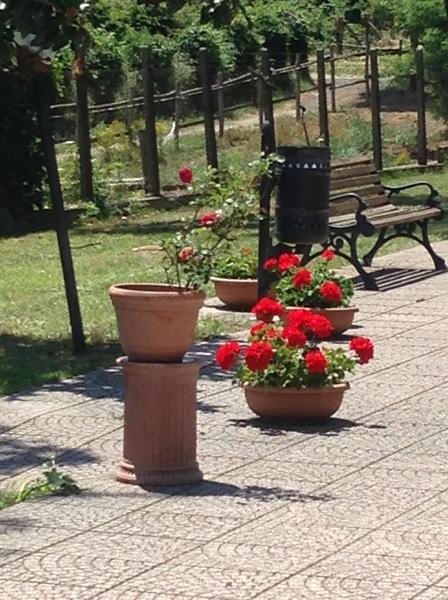casa-di-riposo-roma-nord-esterni-villa-bea-2