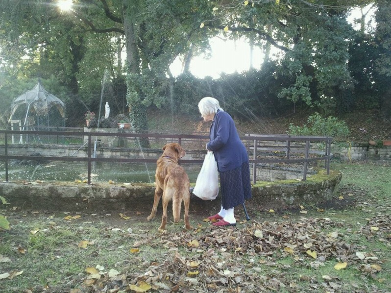 casa-di-riposo-roma-nord-pet-therapy-4