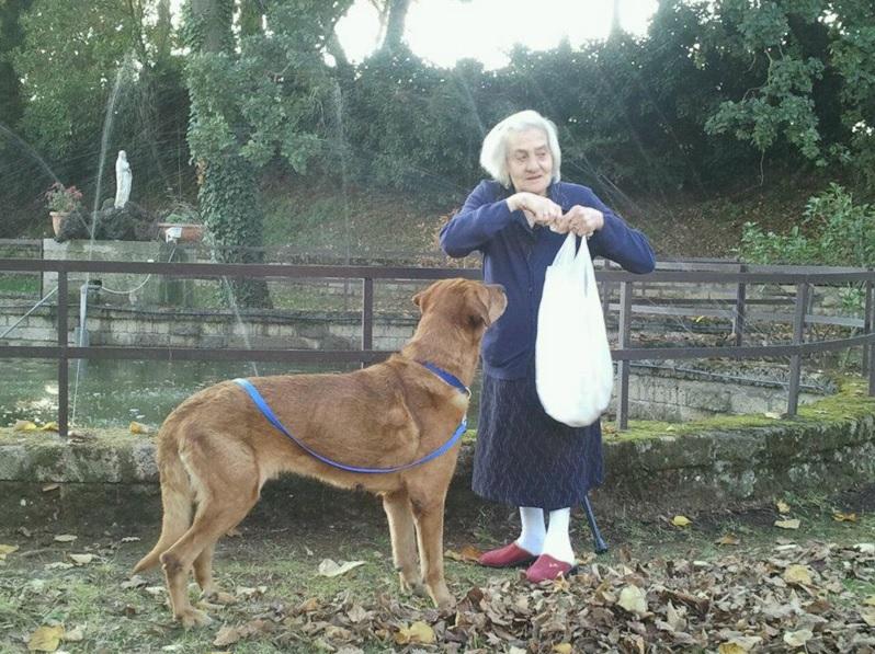 casa-di-riposo-roma-nord-pet-therapy