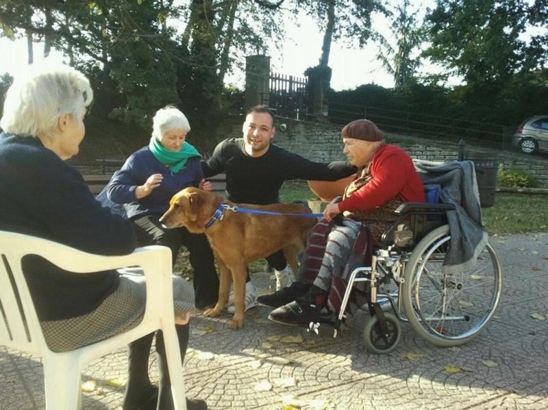 casa-di-riposo-villa-bea-sacrofano-pet-therapy-5