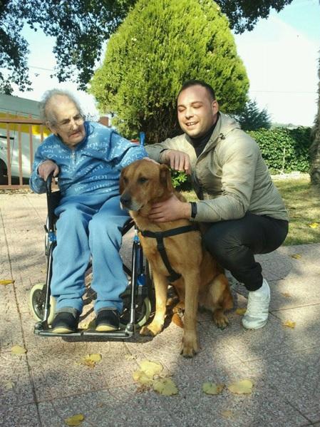 casa-di-riposo-villa-bea-sacrofano-pet-therapy-6